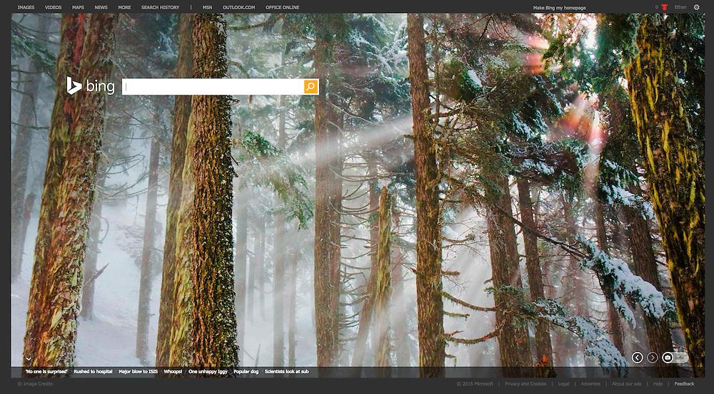 Bing: Homepage (1 January 2015)