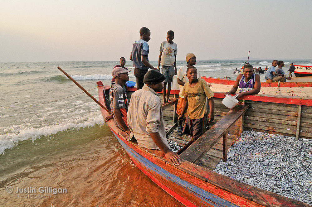 All species caught in the lake are auctioned off at Senga Bay, Lake Malawi, Malawi.