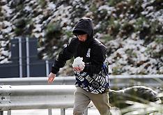 Wellington-Snow coating on Rimutaka Hill Road