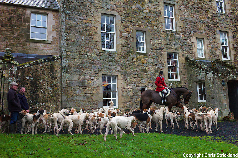 Hounds of the Jedforest Hunt and huntsman Johnny Richardson meet at Hunthill House in the Scottish Borders.