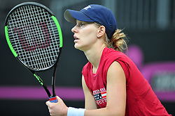 November 8, 2018 - Prague, Czech Republic - Alison Riske of the United States during practice ahead of the 2018 Fed Cup Final between the Czech Republic and the United States of America in Prague in the Czech Republic. The Czech Republic will face United States in the Tennis Fed Cup World Group on 10 and 11 November 2018. (Credit Image: © Slavek Ruta/ZUMA Wire)