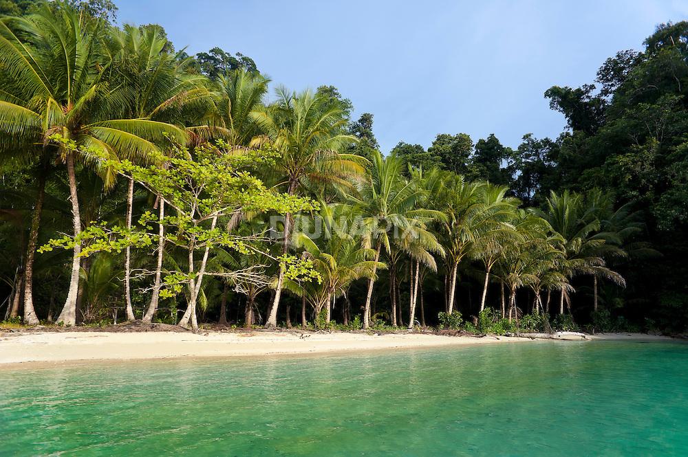 A typical palm-fringed, talcum-powder beach in Triton Bay, Papua
