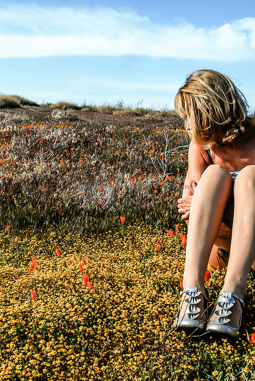 Untitled, Poppy Fields Forever Project. <br /> Antelope Valley Poppy Reserve, CA, 2010.