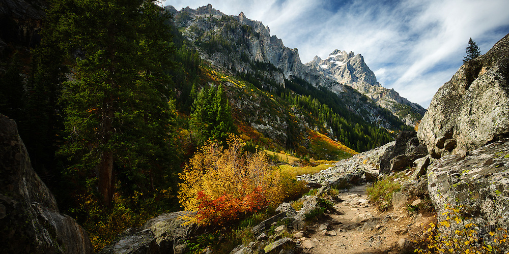 First signs of Autumn along the trail through Cascade Canyon in Grand Teton National Park.