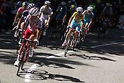 Tour de France 2014 au col de Palaquis en Chartreuse.