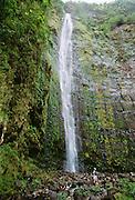 Waimoku Falls, Kipahulu, Maui, Hawaii