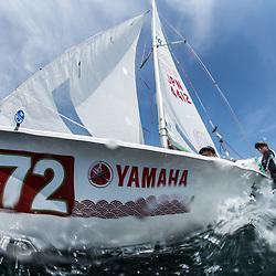 2017 470 national championship 江の島470全日本選手権