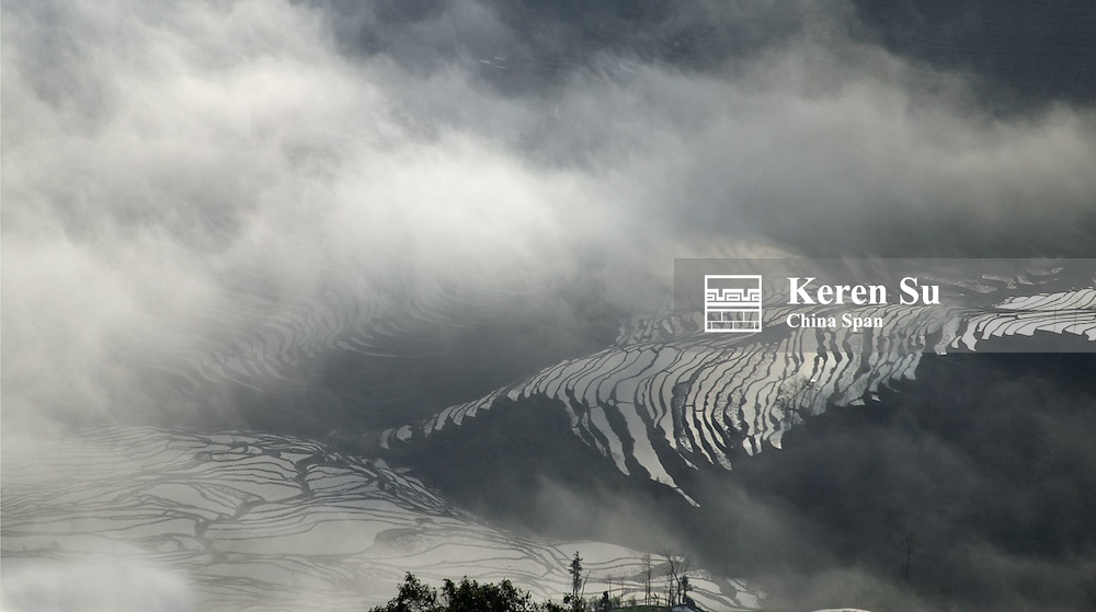 Water filled rice terraces in morning mist in the mountain, Yuanyang, Yunnan Province, China