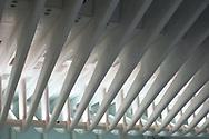 Oculus WTC.