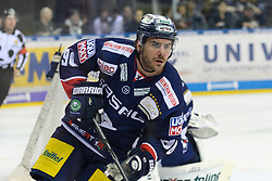 01.03.2019, O2 World, Berlin, GER, DEL, Eisbaeren Berlin vs Koelner Haie, 52. Runde, im Bild Constantin Braun - Eisbaeren, wieder auf dem Eis // during the DEL 52th round match between Eisbaeren Berlin and Koelner Haie at the O2 World in Berlin, Germany on 2019/03/01. EXPA Pictures © 2019, PhotoCredit: EXPA/ Eibner-Pressefoto/ Uwe Koch<br /> <br /> *****ATTENTION - OUT of GER*****