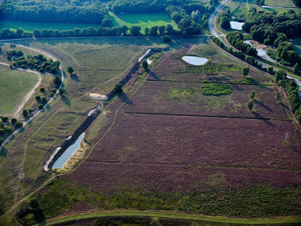 Nederland, Noord-Holland, Blaricum, 26-08-2019; Tafelbergheide bij Blaricum met bloeiende hei.<br /> Flowering heather.<br /> luchtfoto (toeslag op standard tarieven);<br /> aerial photo (additional fee required);<br /> copyright foto/photo Siebe Swart