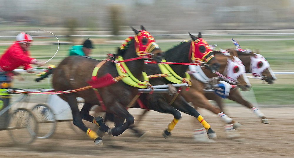 Teams of horses race in the preliminary races of the World Chariot Races in Ogden, Utah Saturday March 19, 2005. August Miller/ Deseret Morning News DIGITAL PHOTOGRAPH