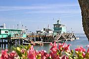 Green Pleasure Pier Catalina Island