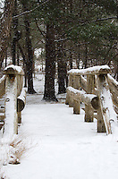 Snow falls on a rustic footbridge along the Great Meadow Loop trail in Acadia National Park, Maine.