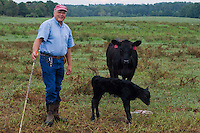 John Stuedemann poses with a cow and her newborn in Comer, Ga. on Monday, Sept. 25, 2006. Stuedemann says he applies techniques with his cattle that he has learned since childhood in Iowa, such as positive reinforcement, minimal occurrences of pain or fear, and calm motions and speech.