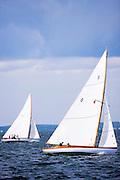 Surprise sailing in the Quissett S Class Regatta.