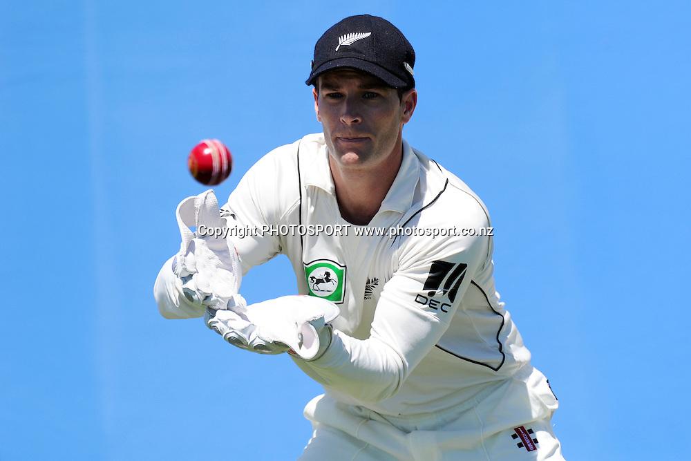 Reece Young during a photoshoot. New Zealand Cricket players photoshoot. Colin Maiden Park, Auckland. 11 November 2011. Photo: Andrew Cornaga/photosport.co.nz