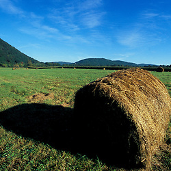 Kent, CT. Hay bales in the Litchfield Hills of western Connecticut.