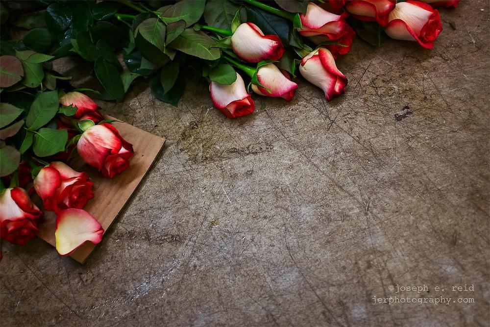 Roses on cutting table at bodega, Brooklyn, NY, US