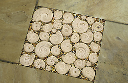 Decorative stone ammonites set into paving on the patio