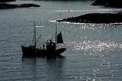NORWAY LOFOTEN 27MAR07 - Silhouette of a Lofoten fishing boat leaving outside Henningsvaer on the Lofoten islands...jre/Photo by Jiri Rezac..© Jiri Rezac 2007..Contact: +44 (0) 7050 110 417.Mobile:  +44 (0) 7801 337 683.Office:  +44 (0) 20 8968 9635..Email:   jiri@jirirezac.com.Web:    www.jirirezac.com..© All images Jiri Rezac 2007 - All rights reserved.