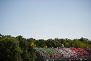 September 3-5, 2015 - Italian Grand Prix at Monza: Ferrari fans (tiffs)