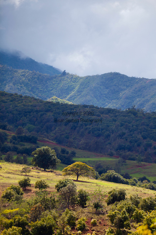The Waianae Mountain Range is the eroded remains of an ancient shield volcano that comprises the western half of the island of Oahu.