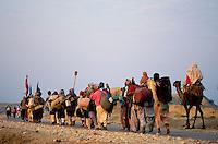 Pakistan - La fête des soufis - Province du Sind et du Balouchistan - Pélerinage soufi de Lahoot -  Quelques milliers de pélerins se rendent à pied sur les tombes des Saint Soufis - Ici 10 à 15 jours de marche à travers la chaine desertique du Khartar au Balouchistan. // Pakistan, Sind, sufi pilgrimage of Lahoot