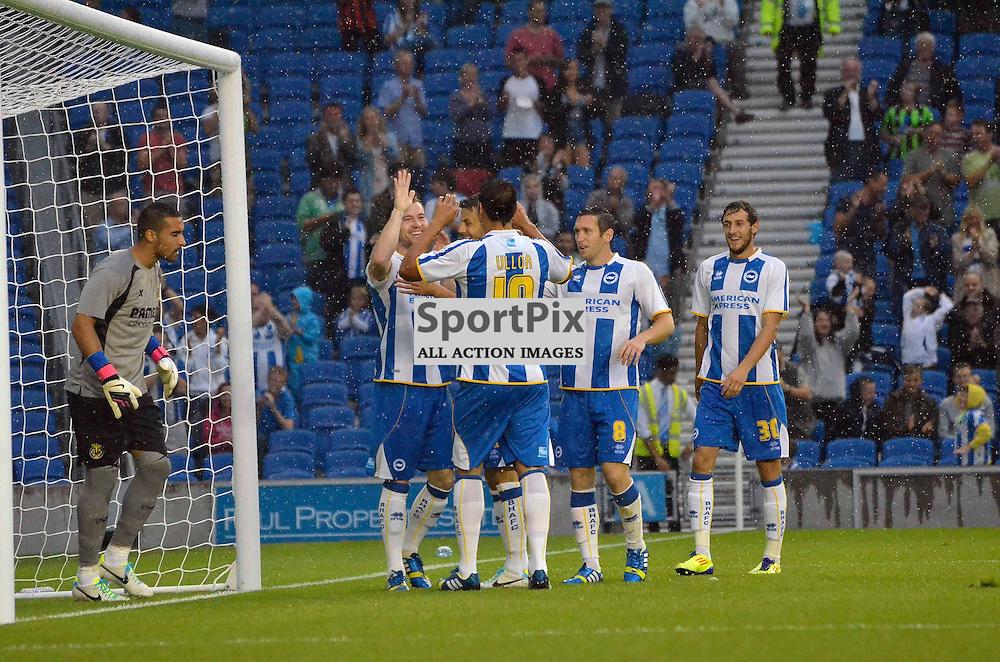 Brighton celebrate their goal. (c) Michael Hulf | SportPix.org.uk