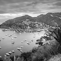 Catalina Island Avalon Bay black and white picture. Catalina Island is a popular travel destination off the coast of Southern California in the United States. Image Copyright ⓒ 2015 Paul Velgos with All Rights Reserved.