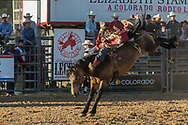 Bareback bronc rider Brian Brown rides Summit Pro Rodeo's High Plains in the second performance of the Elizabeth Stampede on Saturday, June 2, 2018.