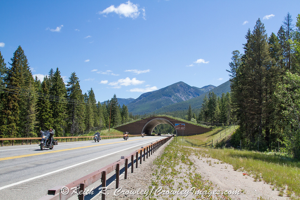 """Animals' Bridge"" wildlife overpass on the Flathead Indian Reservation, U.S. Hwy 93, Montana."