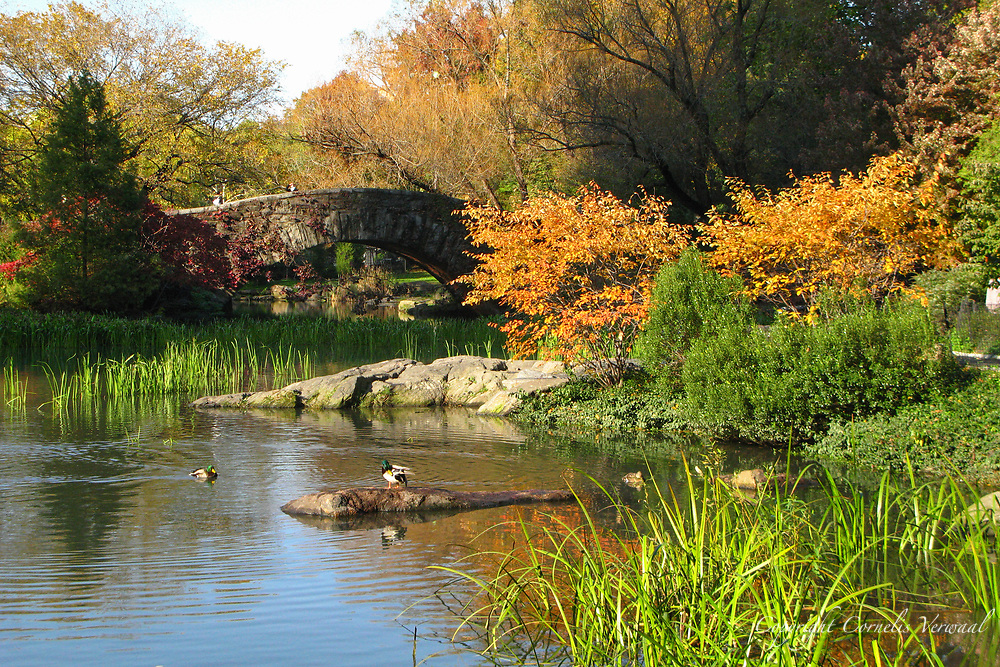 Gapstow Bridge at The Pond in Central Park