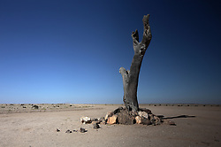 NAMIBIA DAMARALAND 24APR14 - A crossroads near the Omaruru river in Damaraland, Namibia.<br /> <br /> <br /> <br /> jre/Photo by Jiri Rezac<br /> <br /> <br /> <br /> © Jiri Rezac 2014