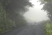 Foggy Doe Hill Road