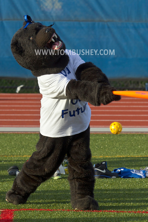 Middletown, New York - The Middie Bear swings and misses the ball at Faller Field during Family Fun Night on May 17, 2013.