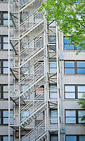 A fire escape in the center of a vertical composition with windows on both sides and some branches with green leaves entering the frame.  Seattle, Washington state