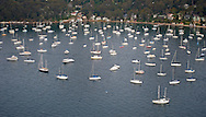 Boats in Rose Bay near Sydney.