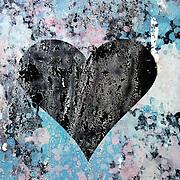 sponge heart
