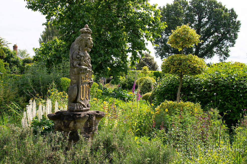 A stone lion statue surrounded by Lupinus, Digitalis and Ilex topiary in The Laskett Gardens, Much Birch, Herefordshire, UK