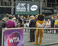 Sandra Klemenschits of Austria retires from professional tennis during the semi finals of the WTA Generali Ladies Linz Open at TipsArena, Linz<br /> Picture by EXPA Pictures/Focus Images Ltd 07814482222<br /> 15/10/2016<br /> *** UK &amp; IRELAND ONLY ***<br /> <br /> EXPA-REI-161015-5021.jpg