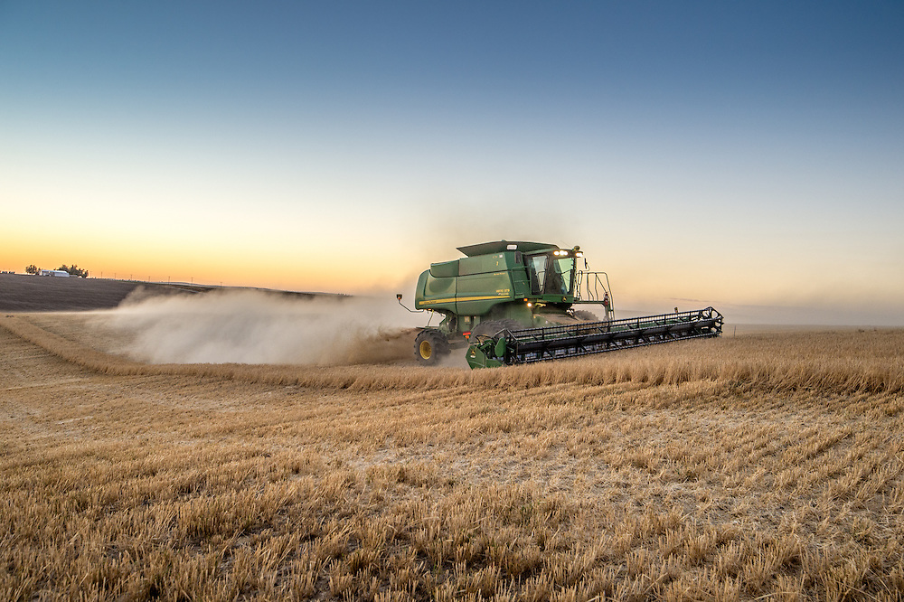 A combine harvester collecting and harvesting barley grains on a farm in Reardan, Washington.