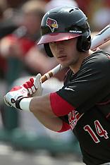 2014 Illinois State Redbirds Baseball photoss