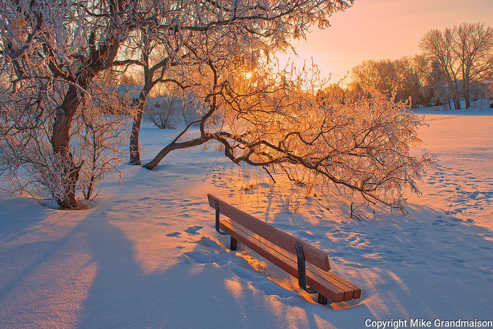 Hoarfrost at sunrise with bench by the pond.  Southdale neighbourhood. <br />