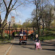 People walk during a warm spring day in Central Park, Manhattan, New York, USA. Photo Tim Clayton