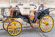 Horse carriage rider waiting in Sevilla (Spain)
