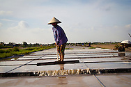 A woman working on salt marsh, Nam Dinh province, Vietnam, Asia.