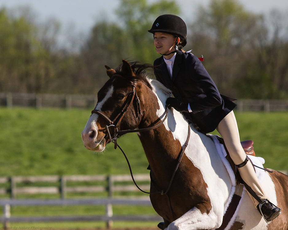 Image from the April 24, 2016 Elmington Hunter Horse Show