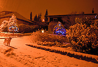 Snowy Christmas lights on a wintry night.