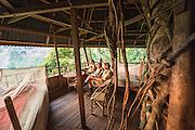 Laos, Boulaven Plateau,